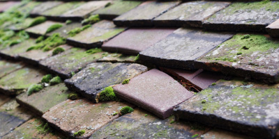 Blithbury roof repair costs